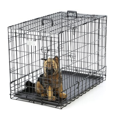 Solutions Side By Side Double Door Pet Crate Size: Medium (26 H X 21 W x 36 L)