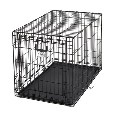 Ovation Single Door Pet Crate Size: 36(26.75 H x 25 W x 37 L)