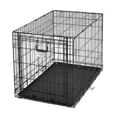 Ovation Single Door Pet Crate Size: 36(26.75 H x 25 W x 37 L)