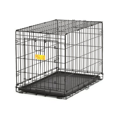 Life Stages �A.C.E. Pet Crate Size: 21.5H x 19.25W x 30.5L