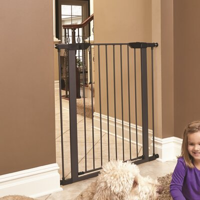 Freddy Steel Pressure Mounted Pet Gate Size: 39 H x 38 W x 1 D, Finish: Graphite