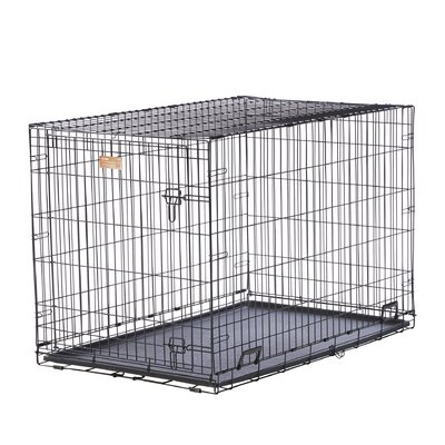 iCrate Single Door Pet Crate Size: X-Small (16 H x 13 W x 22 L)