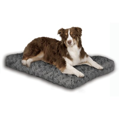 "Quiet Time Ombre Swirl Dog Mat Size: Large (40"" L x 27"" W)"
