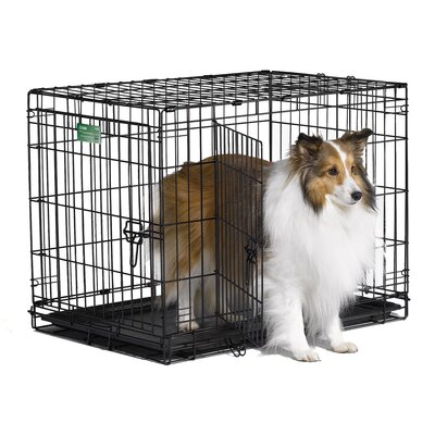 "Midwest Homes For Pets iCrate Double-Door Dog Crate - Size: Medium - 30"" L x 19"" W x 21"" H at Sears.com"