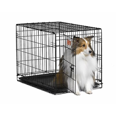"Midwest Homes For Pets iCrate Single-Door Dog Crate - Size: Medium - 30"" L x 19"" W x 21"" H at Sears.com"