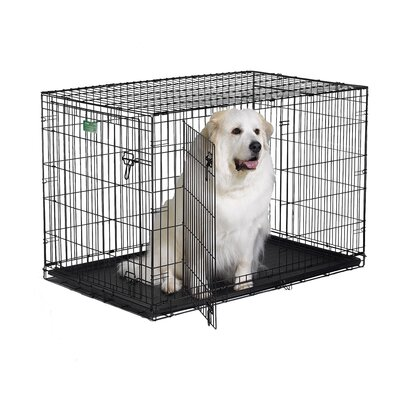 "Midwest Homes For Pets iCrate Double-Door Dog Crate - Size: X-Large - 48"" L x 30"" W x 33"" H at Sears.com"