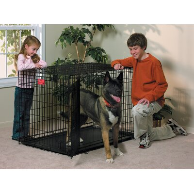 "Midwest Homes For Pets Life Stages Fold & Carry Double-Door Dog Crate - Size: X-Large - 48"" L x 30"" W x 33"" H at Sears.com"