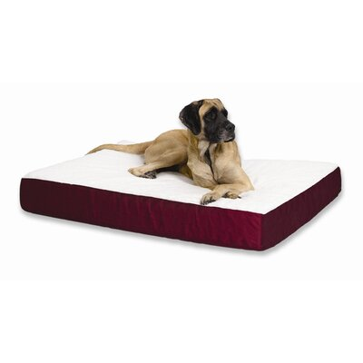 """Quiet Time e'Sensuals Double Thick Orthopedic Dog Pillow Size: Large (40"""" W x 30"""" D), Color: Navy Blue"""
