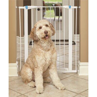 Expands Glow Stripe Pet Gate Size: 39 H x 29 W x 1.13 D, Finish: White
