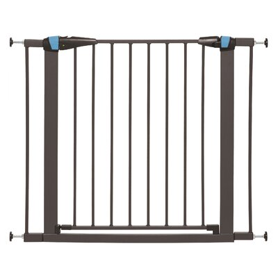 Expands Glow Stripe Pet Gate Size: 29 H x 29 W x 1.13 D, Finish: Graphite