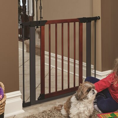 Expand Pet Gate Size: 29 H x 38 W x 0.82 D