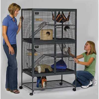 Elizabeth Single Ferret Cage Size: Medium