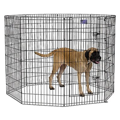 Apollo Black E-Coat Exercise Pet Pen Size: Large (42 H x 24 W)