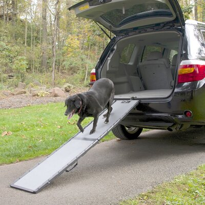Feather-Lite 72 Pet Ramp