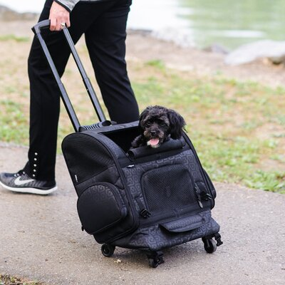 Pet Carrier Size: 18.5 H x 18.5 W x 11.5 D, Color: Black