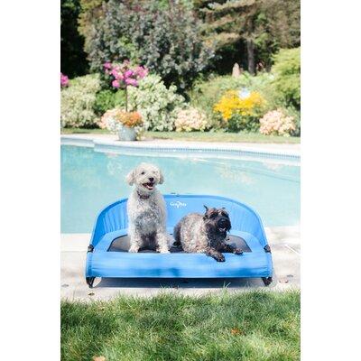 Cool Air Cot Size: Large (7 H x 38 W x 26 D), Color: Trailblazer Blue