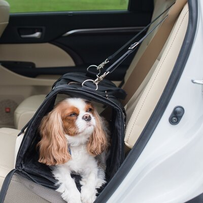 Commuter� Pet Carrier Color: Black