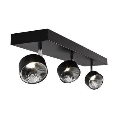 Focus 3-Light Spot Light Color: Black