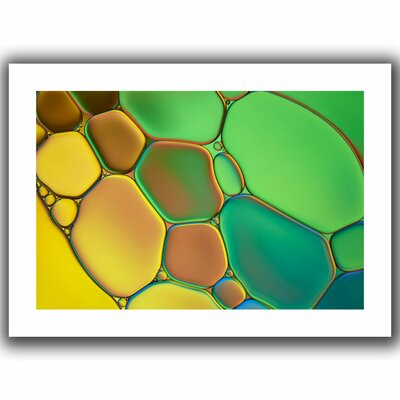 "Stained Glass III' by Cora Niele Graphic Art on Rolled Canvas Size: 16"" H x 22"" W Cniele-074-12x18"