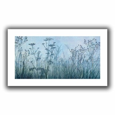 'Wildflowers Early' Graphic Art on Rolled Canvas Size: 16