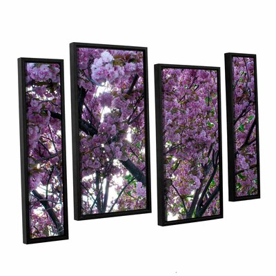 Spring Flowers by Dan Wilson 4 Piece Framed Photographic Print Size: 36