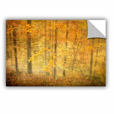 Lost In Autumn by Antonio Raggio Art Appeelz Removable Wall Mural Size: 16