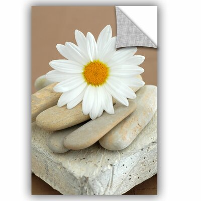 "Ccontemporary Design Daisy And Stones by Elena Ray Art Appeelz Removable Wall Mural Size: 24"" H x 16"" W x 0.1"" D 0ray019a1624p"