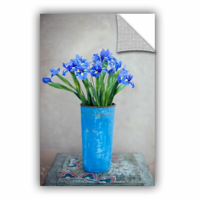 Iris Flowers by Elena Ray Art Appeelz Removable Wall Mural 0ray020a1624p