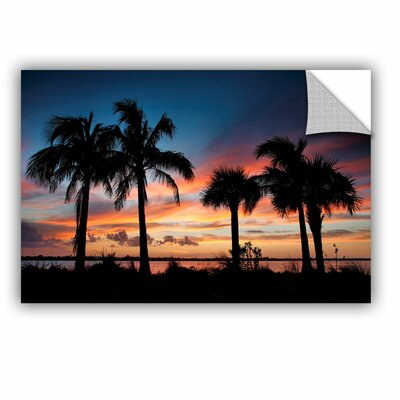 ArtApeelz Tropical Sunset Ii by Steve Ainsworth Photographic Print on Canvas Size: 12