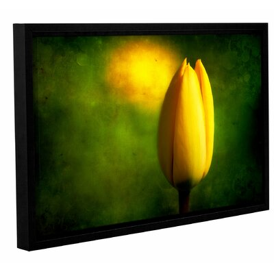 'The Tulip Hallucinations' by Dragos Dumitrascu Framed Painting Print on Wrapped Canvas Size: 24