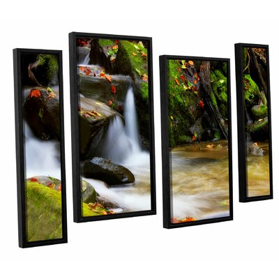 'Timeless Forest' by Dragos Dumitrascu 4 Piece Framed Photographic Print on Canvas Set Size: 36