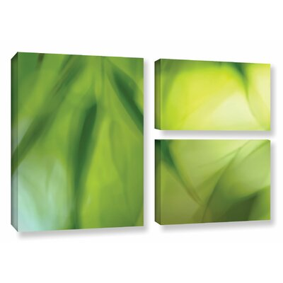 'Zen' by Cora Niele 3 Piece Graphic Art on Wrapped Canvas Set