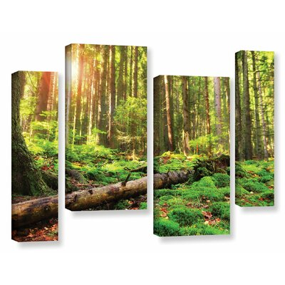 'Back to Green' by Dragos Dumitrascu 4 Piece Photographic Print on Wrapped Canvas Size: 36