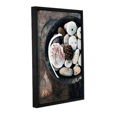 """Bowl Of The Sea by Elena Ray Framed Photographic Print on Wrapped Canvas Size: 18"""" H x 12"""" W 0ray113a1218f"""