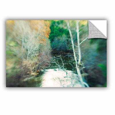 Calm River by Elena Ray Removable Graphic Art 0ray120a1218p