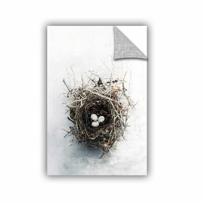 Bird Nest by Elena Ray Photographic Print 0ray104a2436p