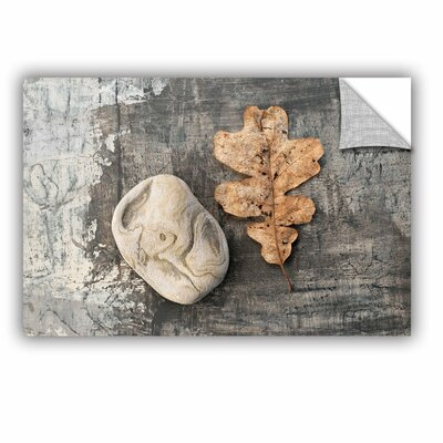 Still Life Leaf Stone by Elena Ray Removable Photographic Print Size: 16