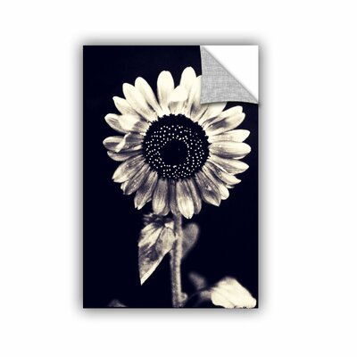 Black And White Sunflower by Elena Ray Photographic Print 0ray057a1218p
