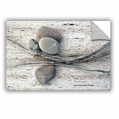 Still Life Sticks Stones by Elena Ray Photographic Print 0ray092a2436p