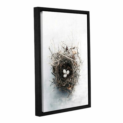 Bird Nest by Elena Ray Framed Photographic Print on Wrapped Canvas 0ray104a1218f