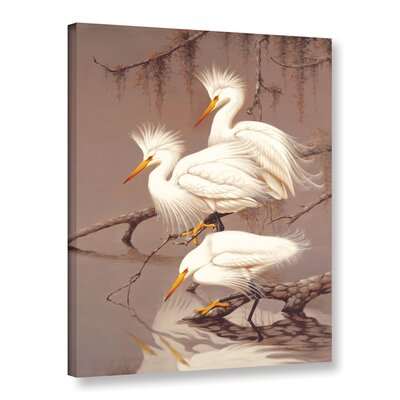 Robertson Great White Herons Photographic Print on Canvas