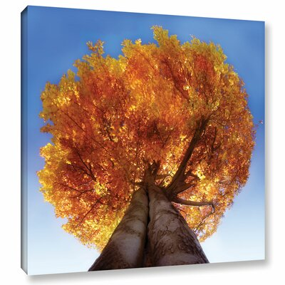 "Burning Tree Photographic Print on Wrapped Canvas Size: 10"" H x 10"" W x 2"" D RDBS4445 33281798"