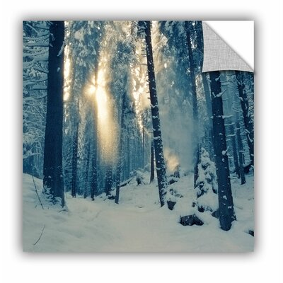 'Winter Light' Photographic Print Size: 14