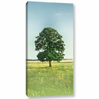 'Daytime Tree'  Photographic Print On Wrapped Canvas Size: 12