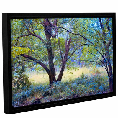 'Forgotten Day Dreams'  Framed Photographic Print On Wrppaed Canvas Size: 12