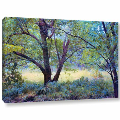 'Forgotten Day Dreams'  Photographic Print On Wrapped Canvas Size: 12