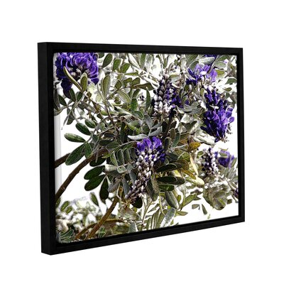 '1st Blooms of Spring 1' Framed Graphic Art Print on Canvas Size: 14