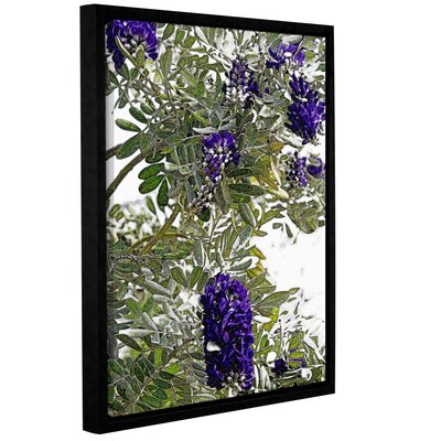 '1st Blooms of Spring 2' Framed Graphic Art Print on Canvas Size: 10