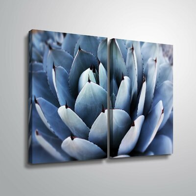 'Summer Succulent Symphony 13' Photographic Print Multi-Piece Image on Canvas Format: Wrapped Canvas, Size: 18