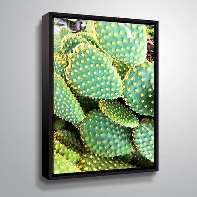 'Sunny Cactus' Photographic Print Format: Black Framed, Size: 10